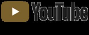 Aktiv Guld YouTube